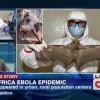 """Migliaia di morti in Palestina, Irak, Ucraina ( tanto citare i Paesi più noti aggrediti dalla barbarie) causati dal virus """"capitalismo"""" ? Che importa, c'è l'Ebola! Oggi pare sia questa l'isteria di massa provocata dalle multinazionali del farmaco e dai media compiacenti. > Ebola. Grati di essere ancora vivi."""