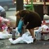 In Italia record povertà secondo Istat. Povertà assoluta per 4 milioni e 598mila persone