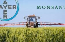 Bayer si pappa Monsanto e vuol essere il padrone della vita