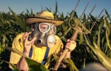 La lenta morte dei latini californiani, vittime del pesticida chlorpyrifos