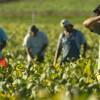 Processo Sabr, in Italia esiste la schiavitù