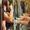 Ci sono 40 malati gravi in cella a Parma. Alcuni hanno più di 80 anni