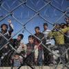 Le mani delle coop nere sul business dei migranti