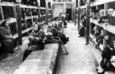 """L'Olocausto delle donne """"non conformi"""" o """"inutili"""""""