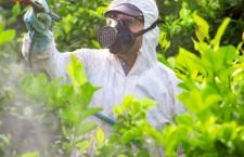 L'inquinamento agrochimico favorisce le malattie infettive
