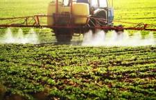 Pesticidi, nuovo studio