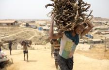 Migranti climatici | Cause, definizioni e numeri di un fenomeno in crescita