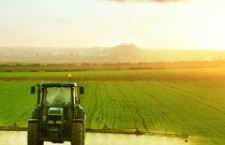 Il contadino invisibile la strenna di Natale della Signora Ministro dell'agricoltura Bellanova