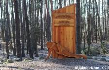 27 gennaio, Giorno della Memoria: ricordiamo il Porrajmos