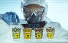 La pandemia dei nuovi Ogm