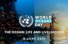 Il greenwashing di Rio Mare nella Giornata Mondiale degli Oceani