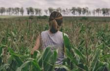 Sfruttate nei campi, migranti in agricoltura
