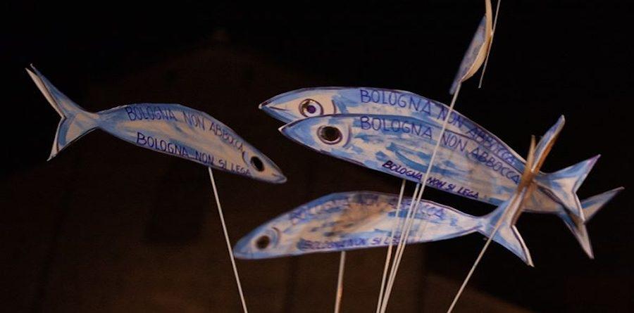 sardine-bologna-1-900x445